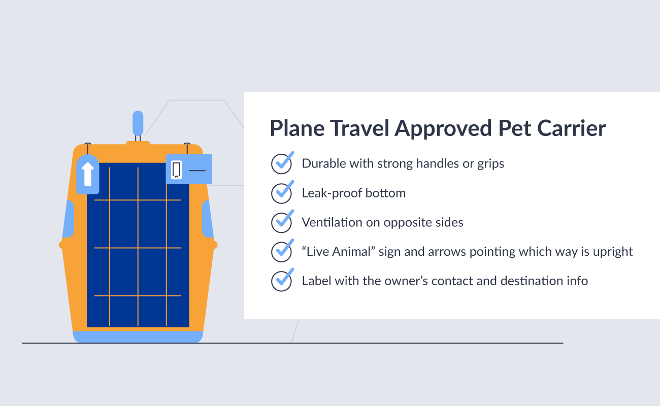 Plane travel approved pet carrier requirements.